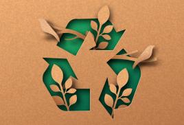 W nowoczesnym przetwórstwie drewna odpady to mniej niż 1%